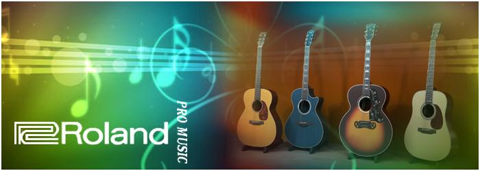 Roland Pro Music :