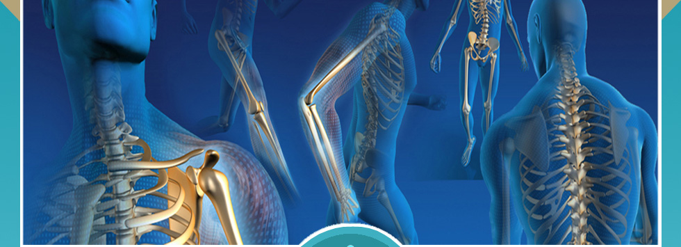 Joint Replacement Surgeries
