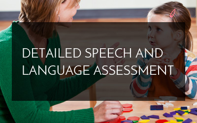 Detailed Speech and Language Assessment